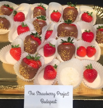 kazar_vip_party_the_strawberry_project