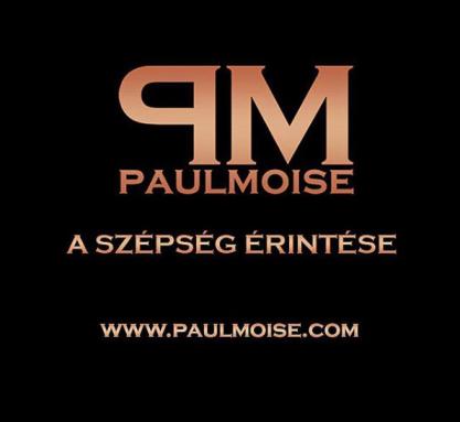 paul moise logo